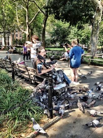 Visiter New York Greenweech Village