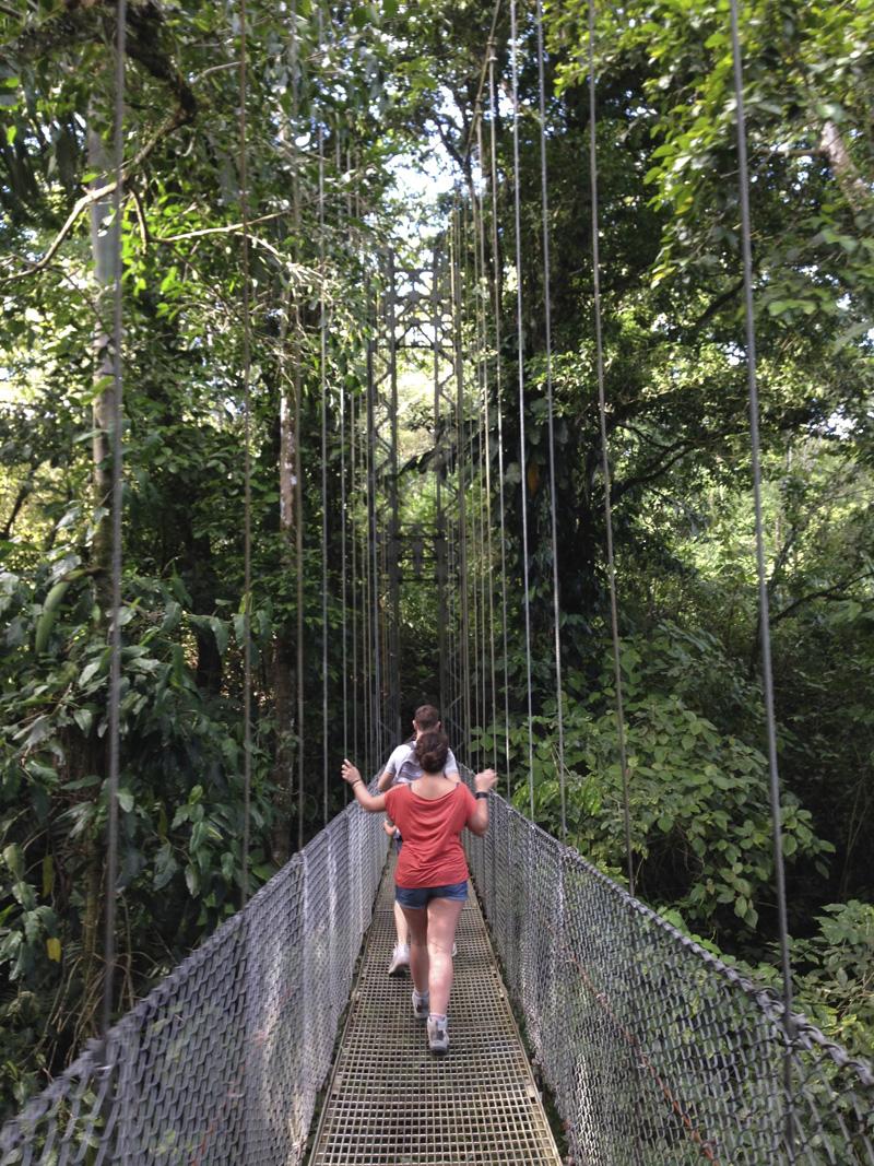 Visiter le Costa Rica Pont de singe La Fortuna